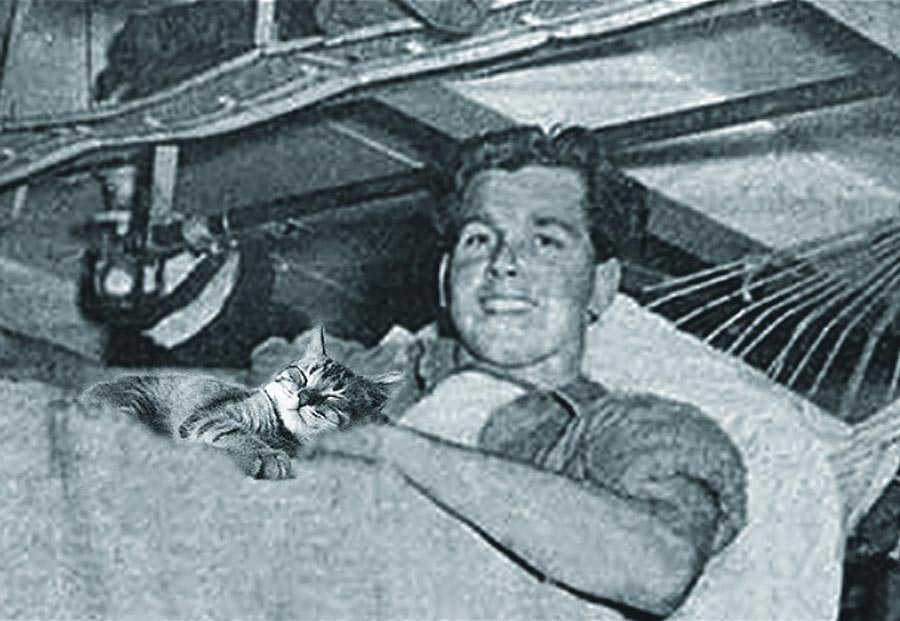 A man in a ship's bunk holds a seafaring feline.