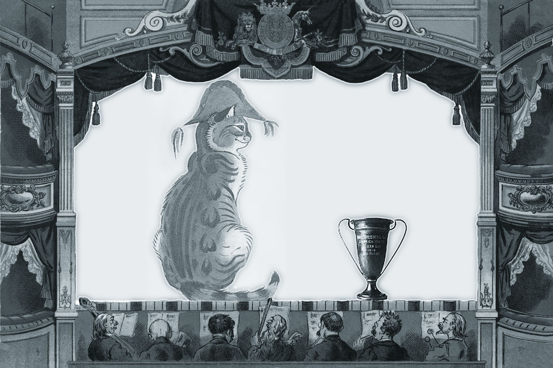 Splendid cat in an admiral's hat with his trophy cup, on stage in an old theatre while the orchestra looks on in amazement.