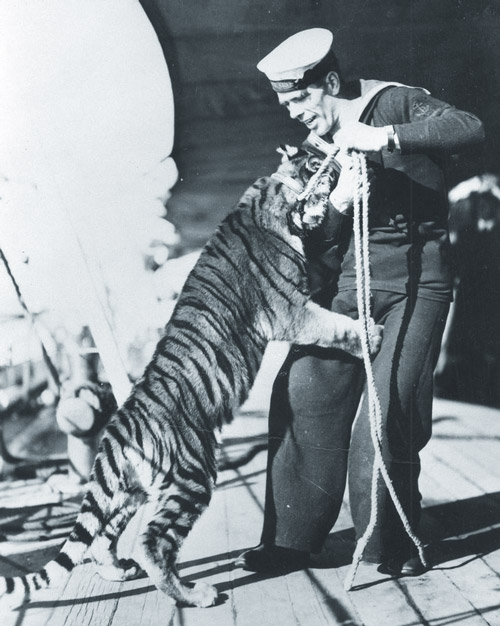Tiggy the ships' cat and his keeper