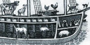 Nelson's floating menagerie