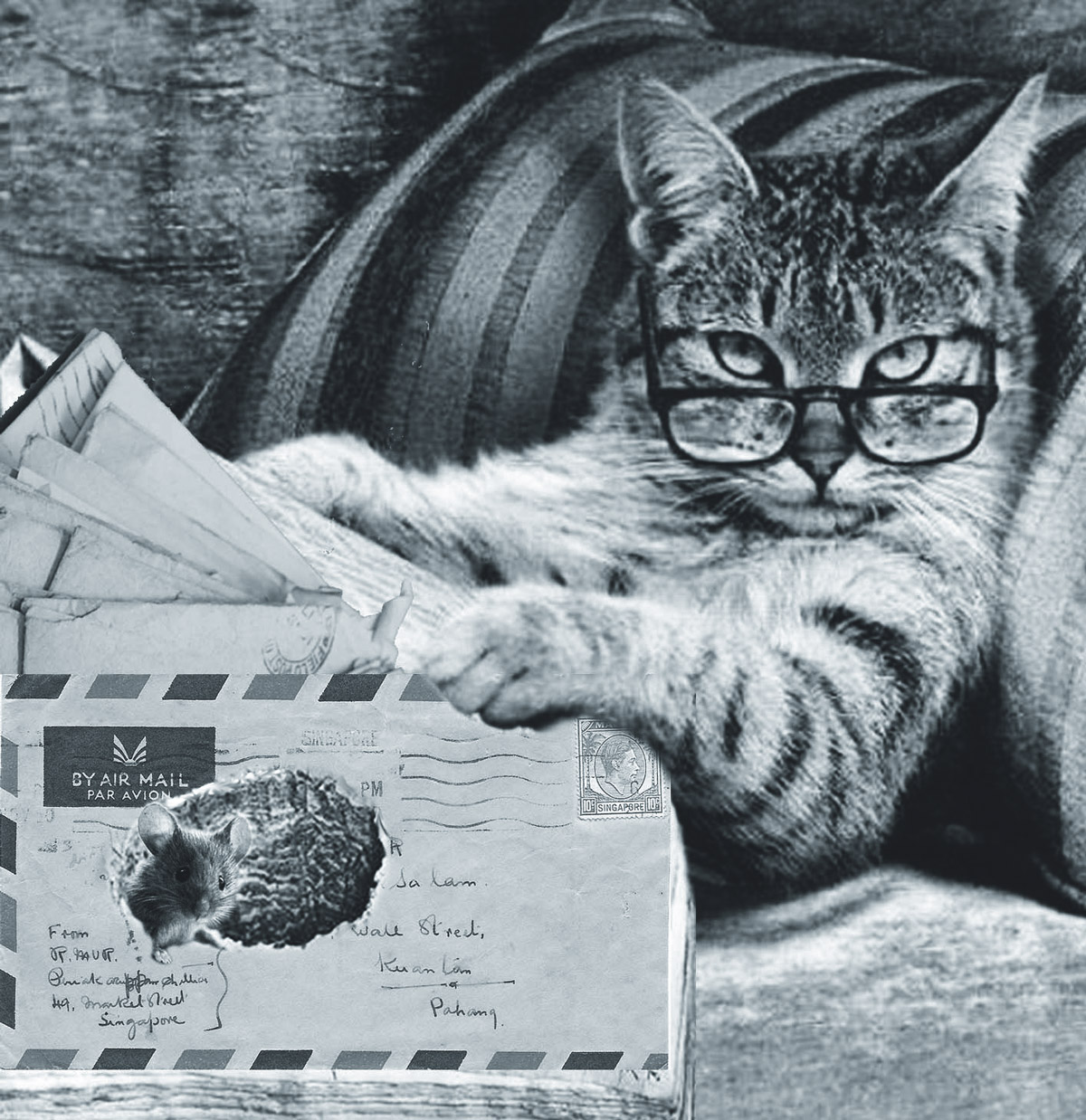 A seafaring feline channelling a young Michael Caine reads the paper while a cheeky mouse eats holes in his mail.