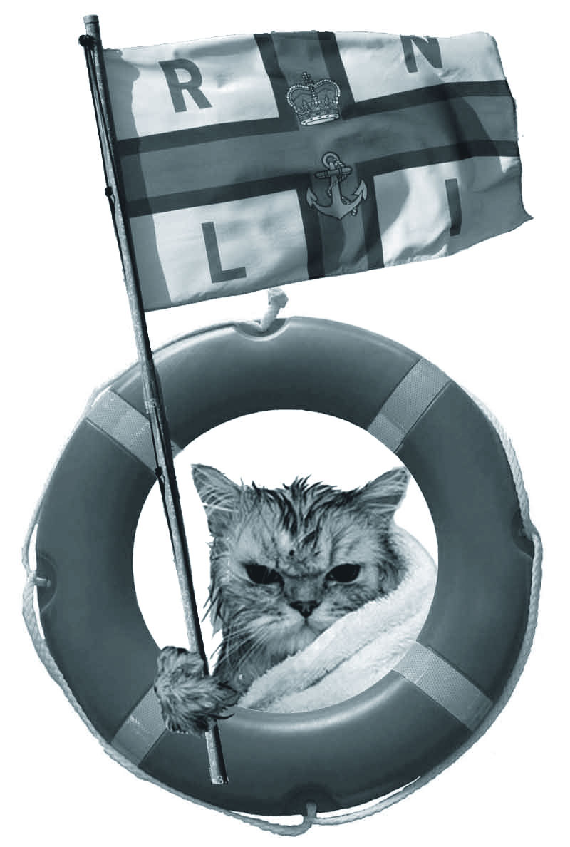 A bedraggled seafaring feline in a towel holds a flag