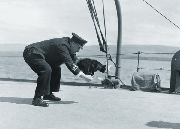 Peebles the cat jumping through a hoop made by Lieutenant Commander R H Palmer's arms