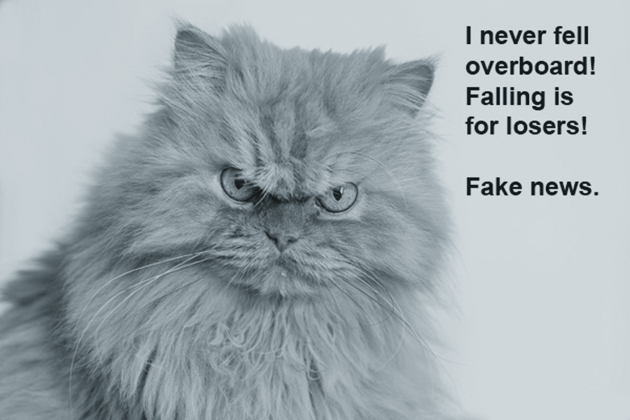 Ships cats and seafaring felines deplore fake news. A cat shouting: I never fell overboard!Falling is for losers!Fake news.