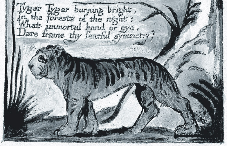 William Blake's Tyger