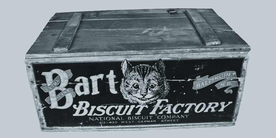 seafaring felines and ships cats aren't afraid of a crate of hardtack